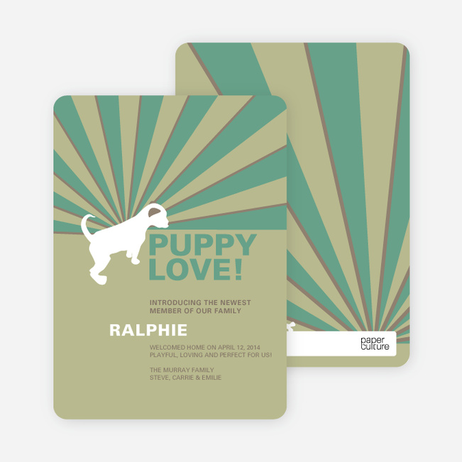 Rays of Light Cat and Dog Cards - Green
