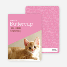 Kitty Cat Cards - Pink
