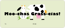 Grass–cias - Green