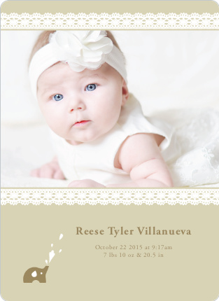 Elephant Lace Photo Birth Announcements - Mocha Coconut
