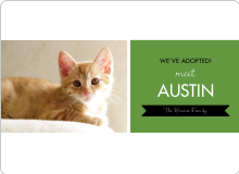 Pet Adoption Cards - Green