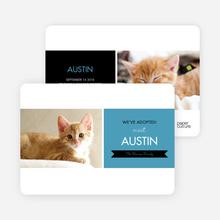 Pet Adoption Cards - Blue