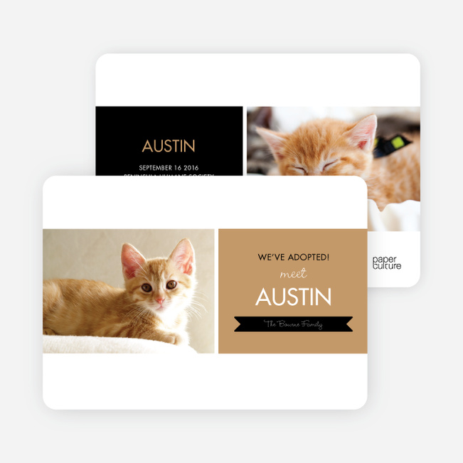 Pet Adoption Cards - Beige