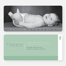 Studio Birth Announcements - Green