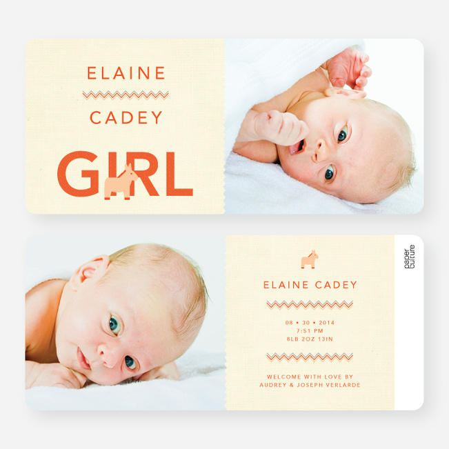 Nice A** Donkey Themed Birth Announcements - Orange