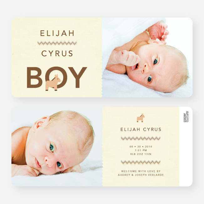 Nice A** Donkey Themed Birth Announcements - Brown