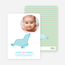Sammie Seal Photo Cards - Celery