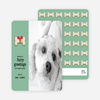 Furry Dog Holiday Cards - Green