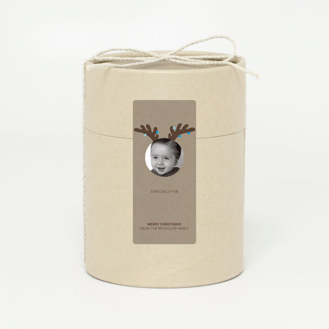 Reindeer Antler - Blue