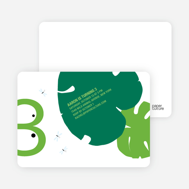 Frog Modern 3rd Birthday Invitation - Light Green