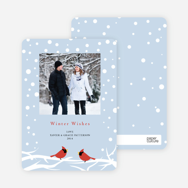 Cardinal Greetings Holiday Photo Cards - Glacier