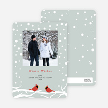 Cardinal Greetings Holiday Photo Cards - Pale Sage