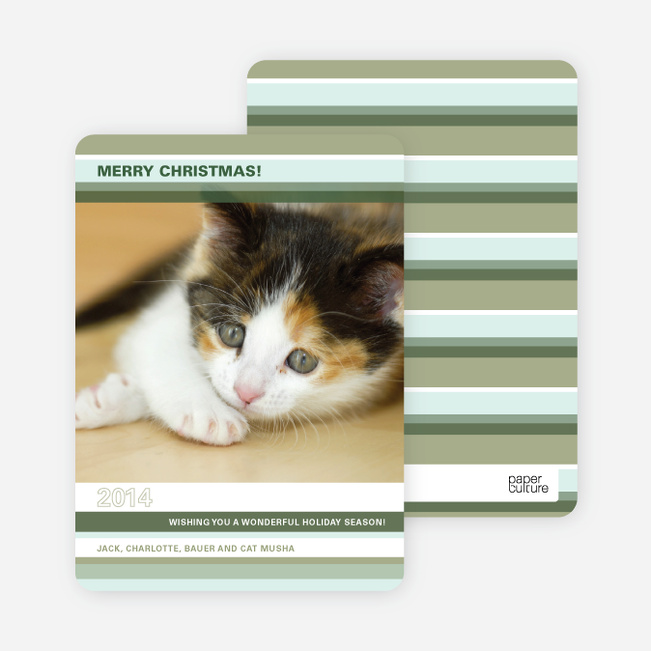 Unique Holiday Cards: Colorful Stripes - Bamboo