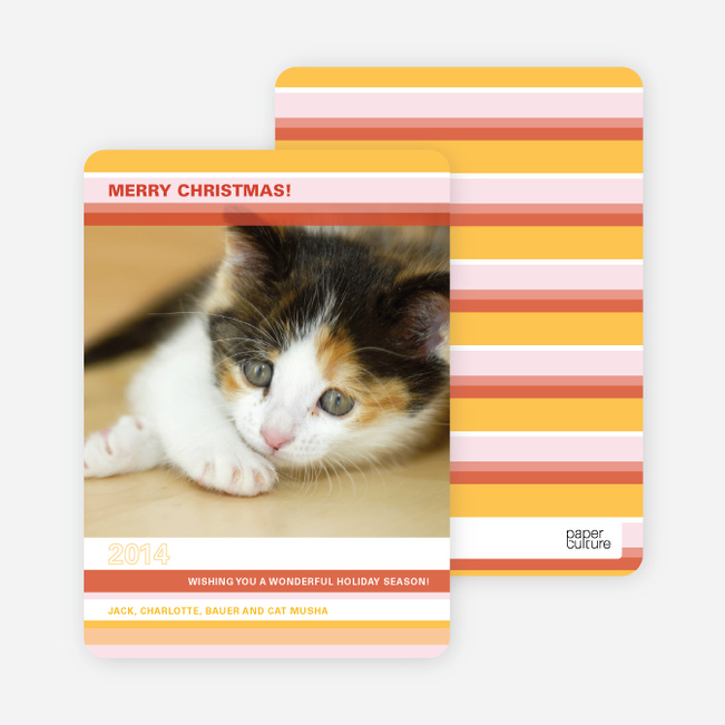 Unique Holiday Cards: Colorful Stripes - Gold