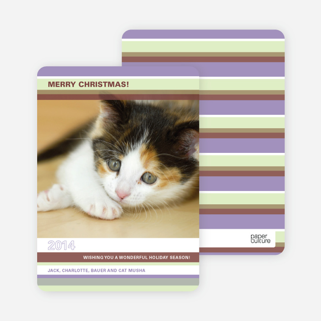 Unique Holiday Cards: Colorful Stripes - Lilac