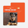 Pawsome Dog Holiday Photo Cards - Orange