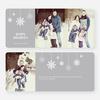 Snowflake Ornaments Holiday Cards - Gray