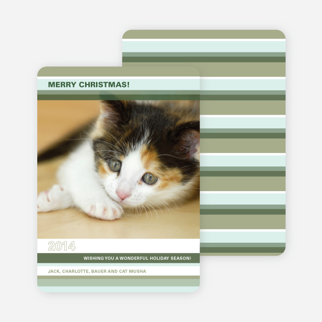 Colorful Stripes Holiday Photo Cards - Bamboo