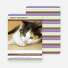 Colorful Stripes Holiday Photo Cards - Lilac
