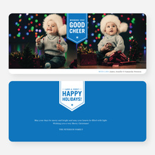 Wishing You Good Cheer Holiday Cards - Blue