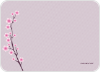 Cherry Blossom Spring: Personal Stationery - Front View