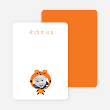 Note Cards: 'Tiger: Animal Photo Head' cards. - Carrot Orange