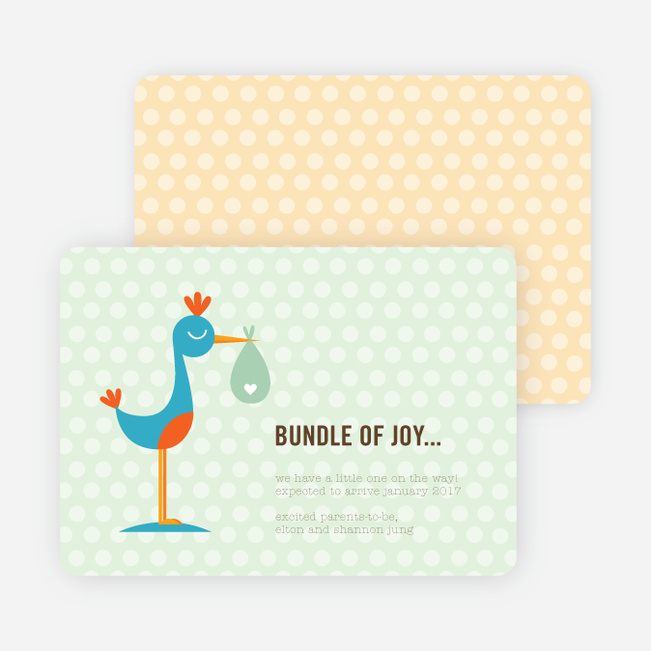 Stanley the Stork Pregnancy Announcement Cards - Lime Salt