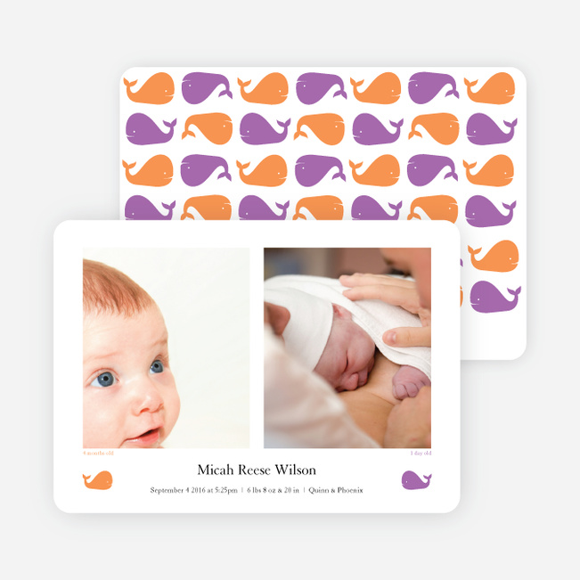 That S/He Blows Whale Birth Announcements - Purple Peace
