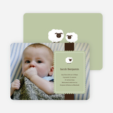 Your Little Lamb Photo Birth Announcements - Celadon