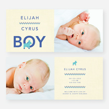 Nice A** Donkey Themed Birth Announcements - Blue