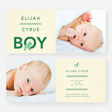 Nice A** Donkey Themed Birth Announcements - Green