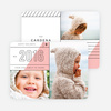 Slanted Lines Holiday Cards  - Pink