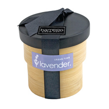 Lavender Kit with Bamboo Pot - Purple
