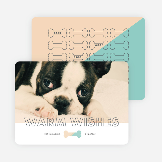 Give the Dog-a-bone Holiday Cards - Beige