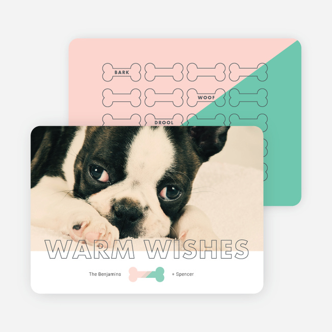 Give the Dog-a-bone Holiday Cards - Pink