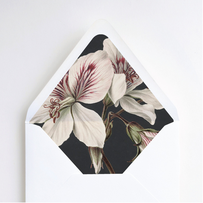 Floral Bliss Envelope Liners - Black