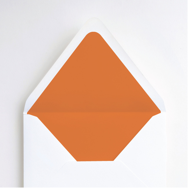 Modern and Classic Envelope Liners - Orange