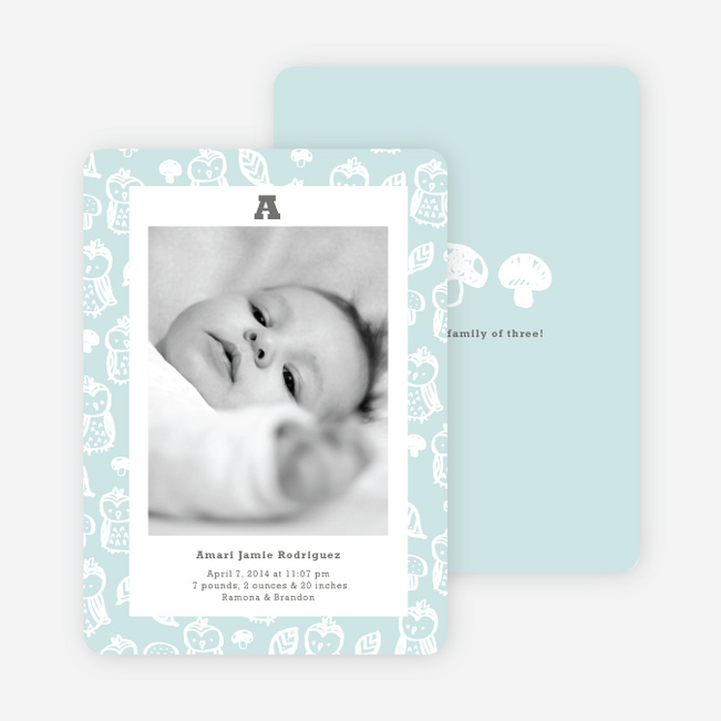 Framed Owl Birth Announcements - Blue Bib