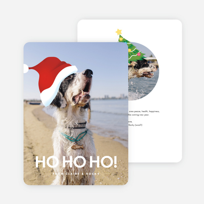 Bliss Holiday Cards - Black