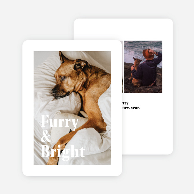 Furry & Bright Multi Photo Holiday Cards - White