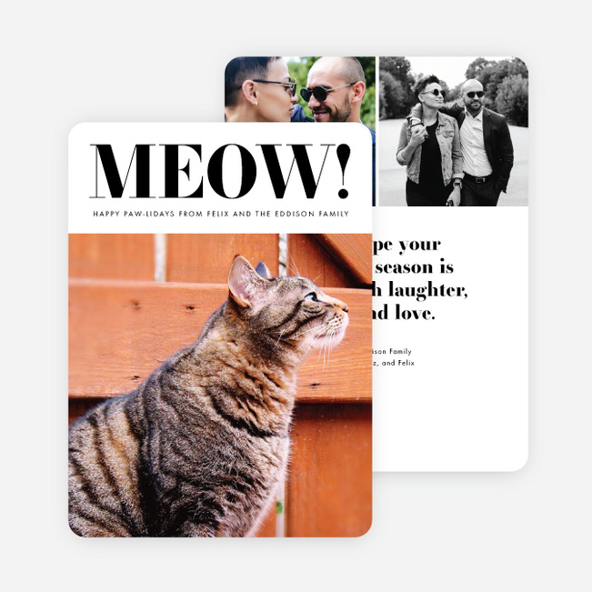 Feline Headline Multi Photo Holiday Cards - Black