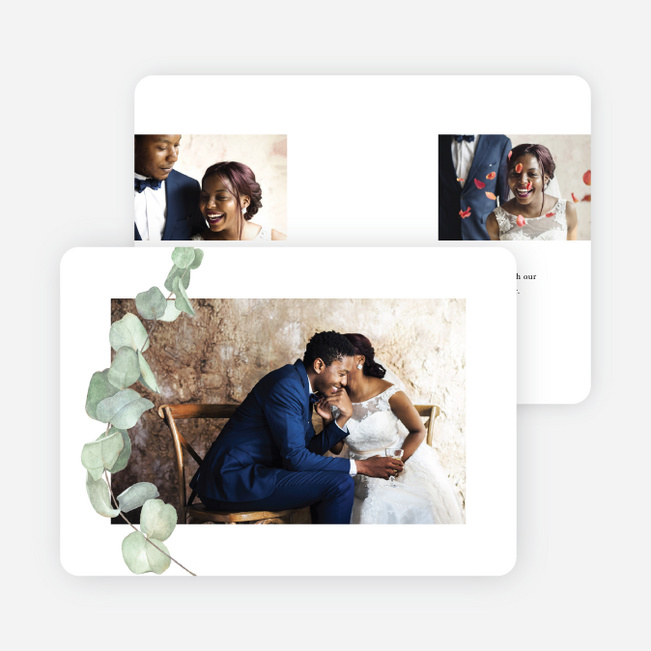Eucalyptus Flourish Multi Photo Holiday Cards - Black