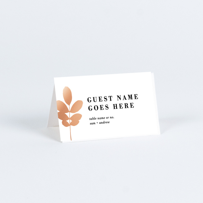 Botanical Outlines Wedding Name Cards & Place Cards - Pink