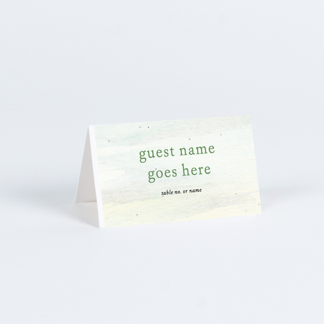 Tahoe Inspired Wedding Name Cards & Place Cards - Multi