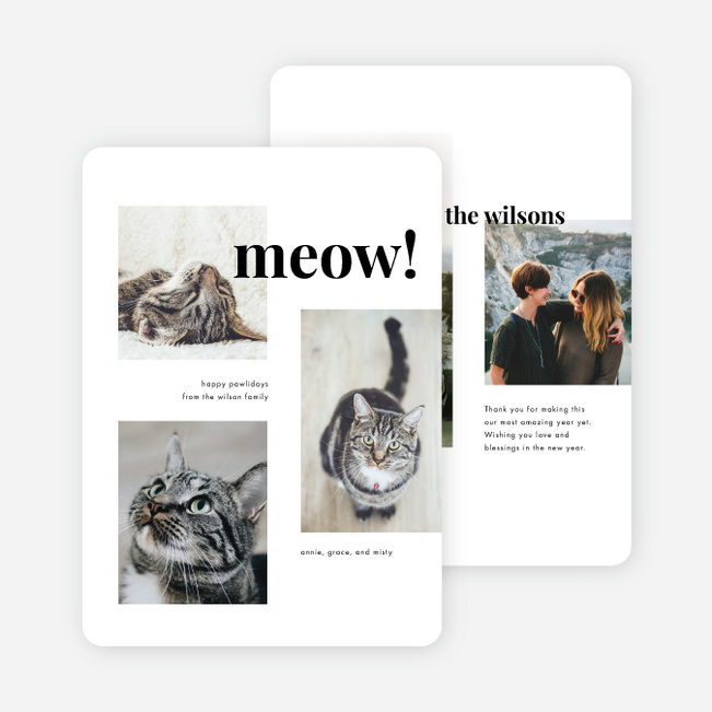 All Meow Pet Holiday Cards - White