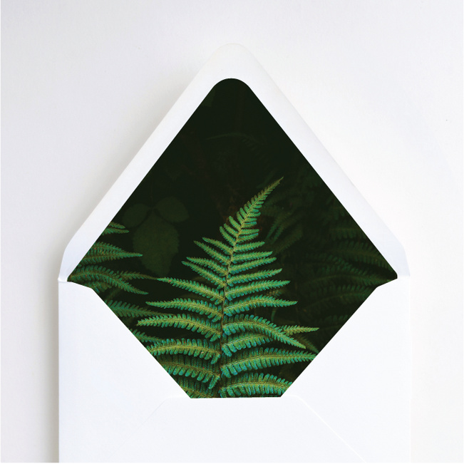 Exquisite Ferns Envelope Liners - Green