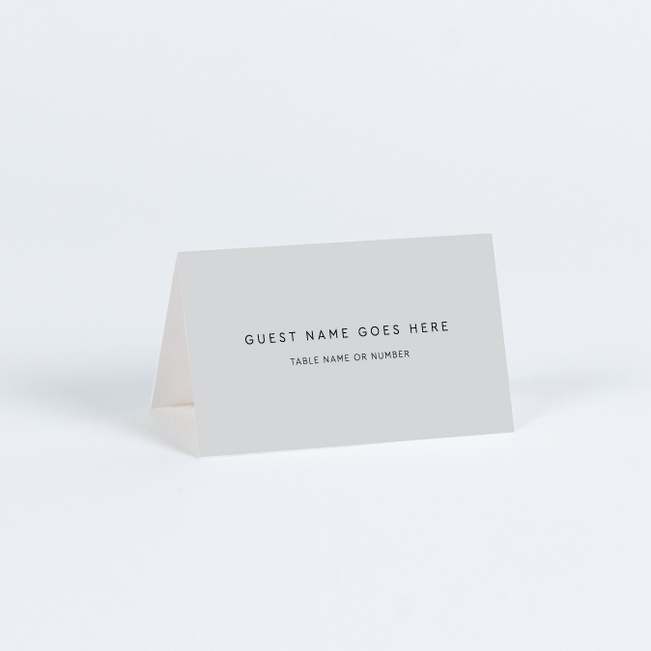 Big and Small Wedding Name Cards & Place Cards - Gray